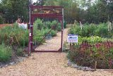 Anderson-Cottonwood Christian Assistance Community Garden