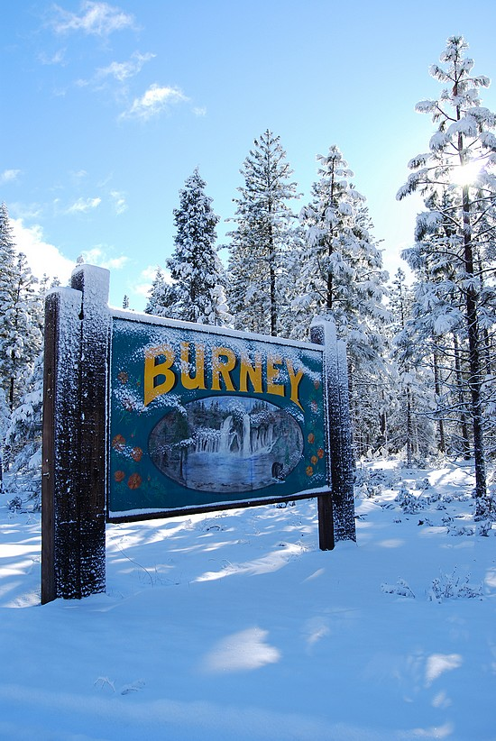 intermountain newspaper in burney ca Find 1 listings related to intermountain news in burney on ypcom see reviews, photos, directions, phone numbers and more for intermountain news locations in burney, ca.